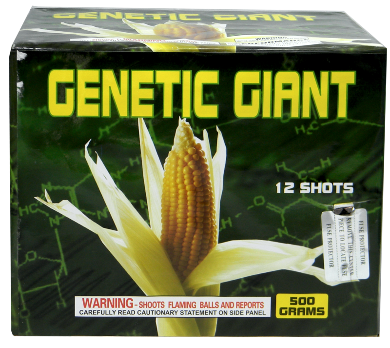"Genetic Giant -12 Shot by ""Hot Shot"""