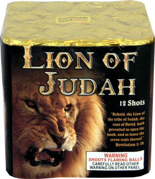"Lion of Judah – 12 Shot by ""Hot Shot"""