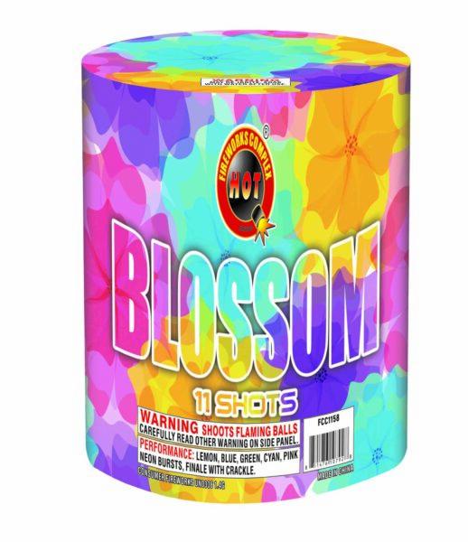 Blossom – 11 Shot